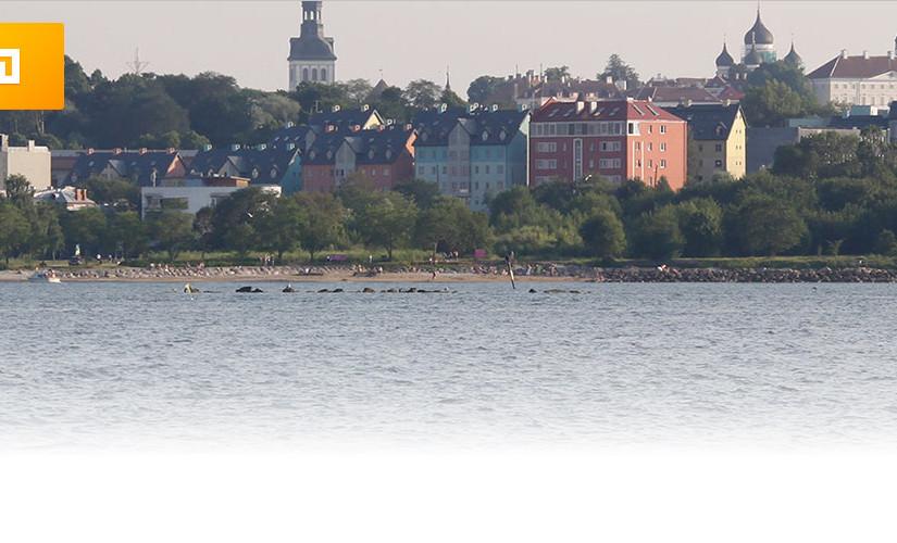 Tallinna elanike arv ületas (jälle) 440 000 piiri